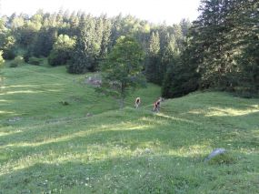 AlpenX_300716_Tag2_007