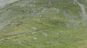 AlpenX_020816_Tag5_051